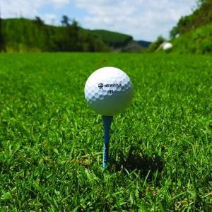 뉴즐 넘버스타 N2 고반발 골프공 3구