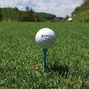뉴즐 넘버스타 B3 고반발 골프공